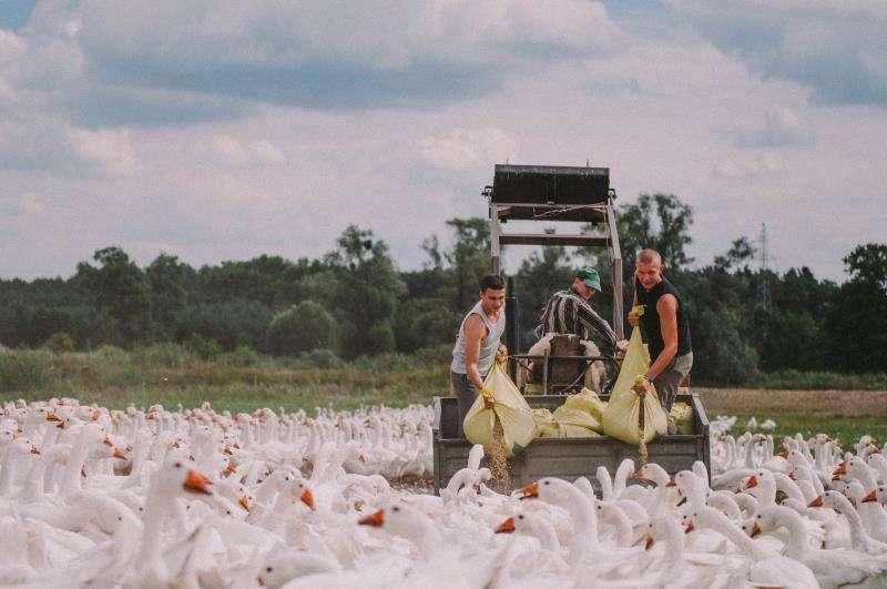 Un fotograma del largometraje ganador facilitado por la organización. EFE/Cinema Jove