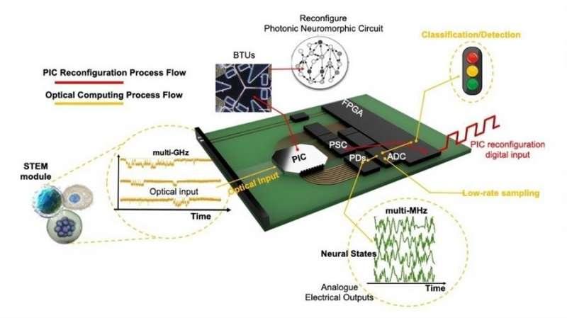 Un diagrama del dispositivo, facilitada por la UPV. EFE