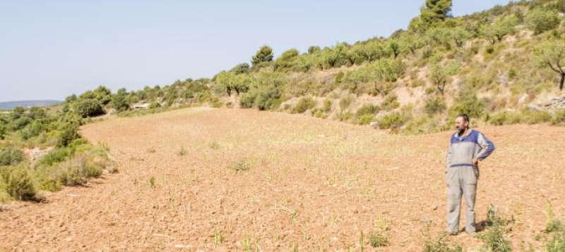 Agricultor de Aras de los Olmos. EPDA