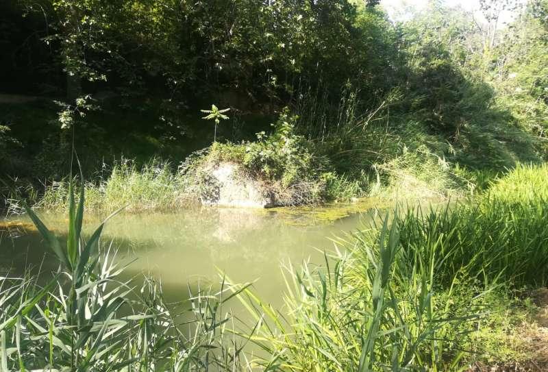 El río Palancia a su paso por Segorbe