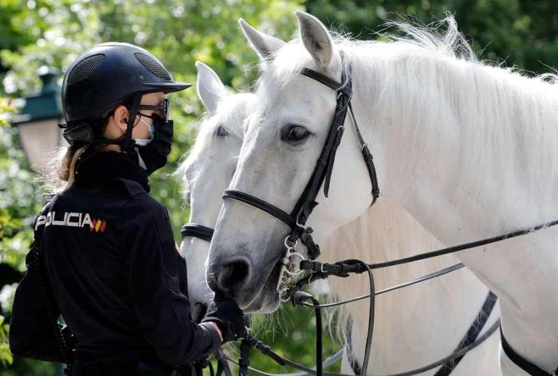 Una agente de la Policía Nacional, junto a su caballo en los jardines de Viveros de Valencia. EFE