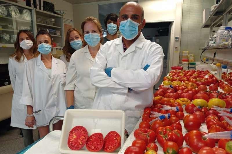 Los investigadores de la UPV Elena Soler, Cristina Casanova, Resu Burguet, María Figás, Leandro Pereira y Salvador Soler. Imagen facilitada por la universidad