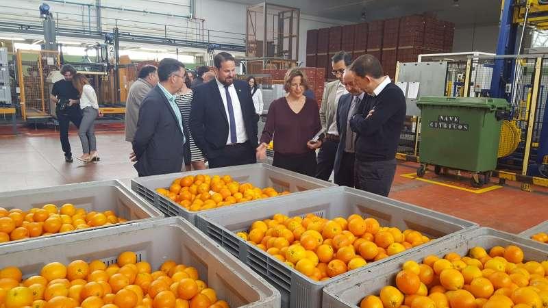 La valenciana es la tercera Comunidad Autónoma en el ranking de exportación de productos agroalimentarios, por detrás de Andalucía y Cataluña
