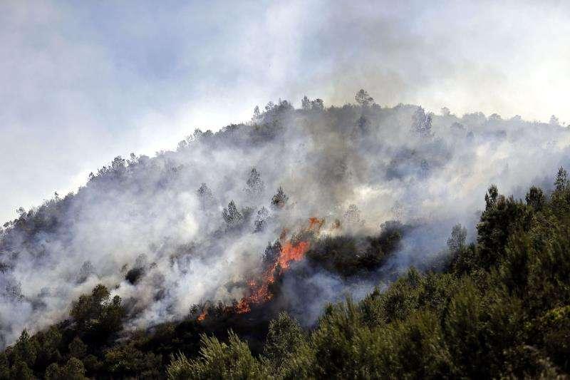 Imagen del 17 de junio de 2016 de los incendios forestales que afectaron a Bolbaite y otros términos municipales y que calcinaron más de 1.600 hectáreas y provocaron daños por 834.000 euros. EFE/Archivo