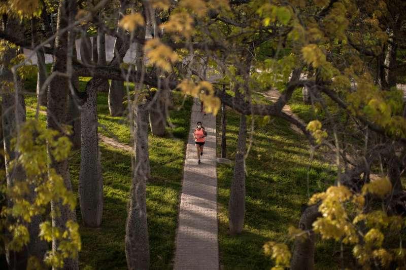 Una persona practica deporte en el parque del Turia de València