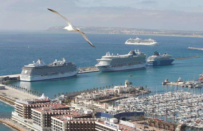 Cuatro cruceros en el Puerto de Alicante. EFE/Archivo
