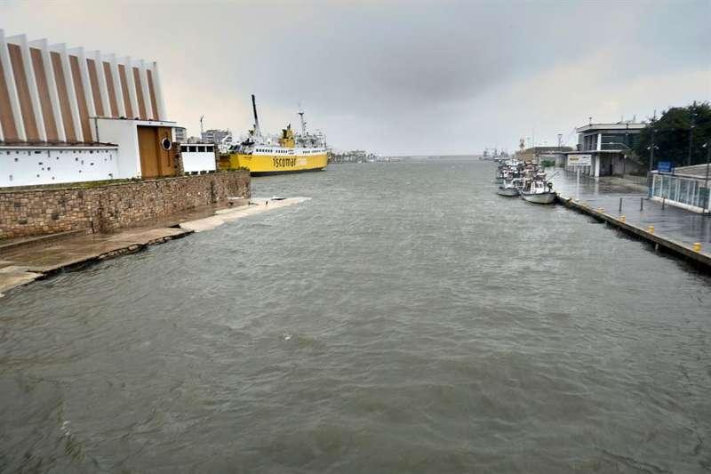 Imagen del puerto de Gandia. EFE/Natxo Francés/Archivo