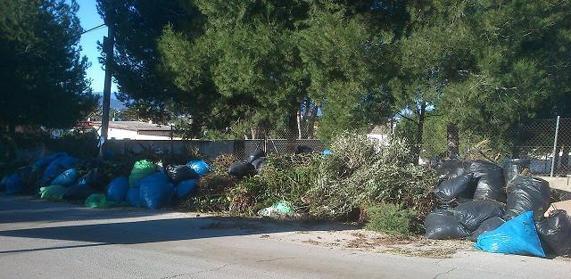 Imagen de los residuos para hacer la biomasa. FOTO: EPDA