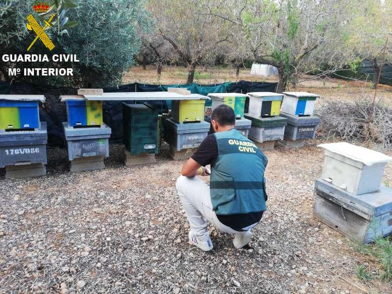 La Guardia Civil realiza la investigación en las colmenas. EPDA