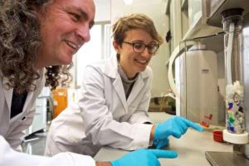 Los investigadores de la Universidad de Alicante (UA), la estudiante de doctorado de Ingeniería Química Andrea Cabanes, y su director de tesis y catedrático del citado departamento universitario, Andrés Fullana. EFE/Roberto Ruiz