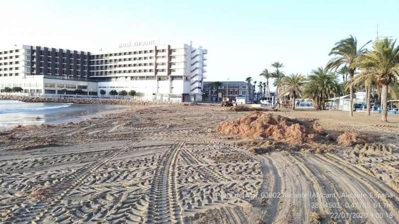 Limpieza de las playas de Alicante. EPDA
