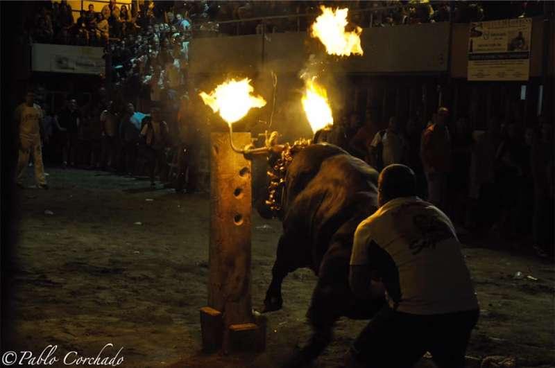Este noche no habrá toros embolados. Foto: P.Corchado