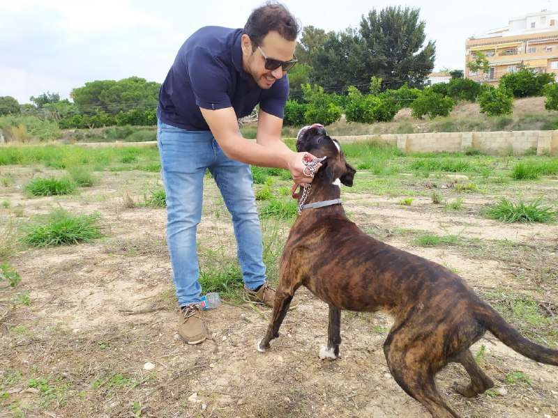 Ibáñez con un perro. EPDA
