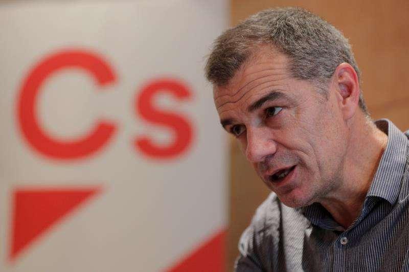 El diputado de Ciudadanos por Valencia Toni Cantó. EFE/Archivo