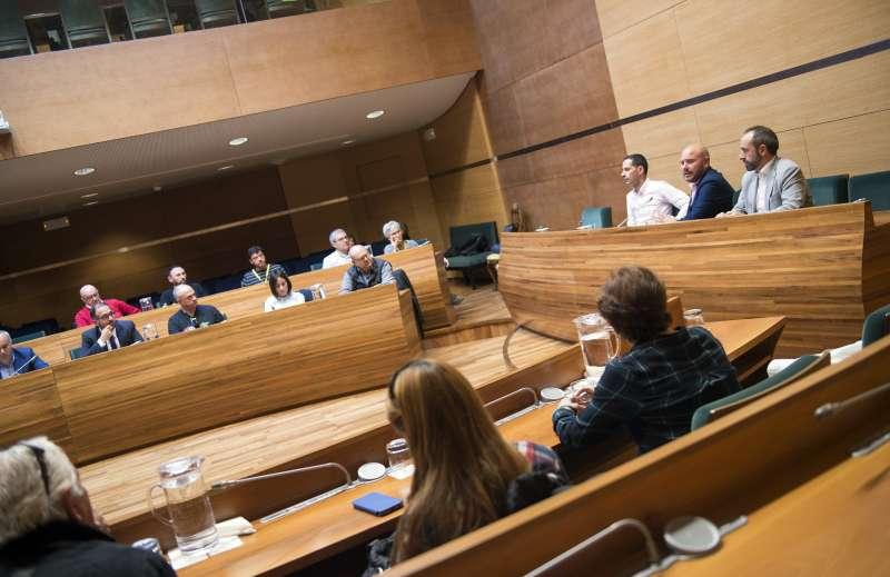 Pleno donde se han hecho públicas las ayudas a las Mancomunidades.-EPDA
