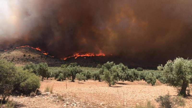 Incendio en Beneixama. UNIÓ DE LLAURADORS