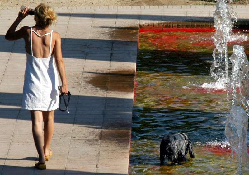 Una joven se toma un refresco mientras su perro se baña en una fuente de Valencia para mitigar el calor.