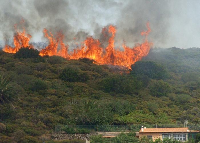 Imagen de un incendio. FOTO: EPDA.
