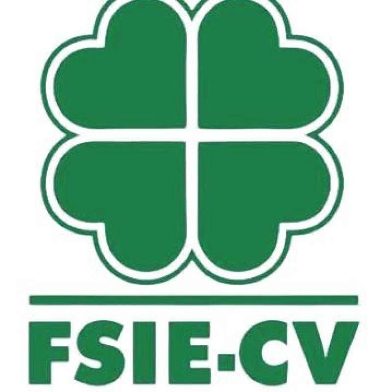 FSIE-CV / EPDA