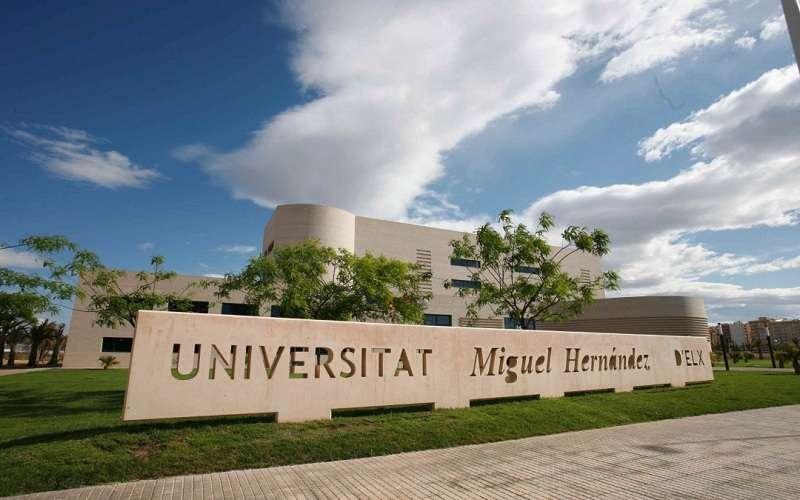 Imagen de archivo de la Universidad Miguel Hern�ndez (UMH)