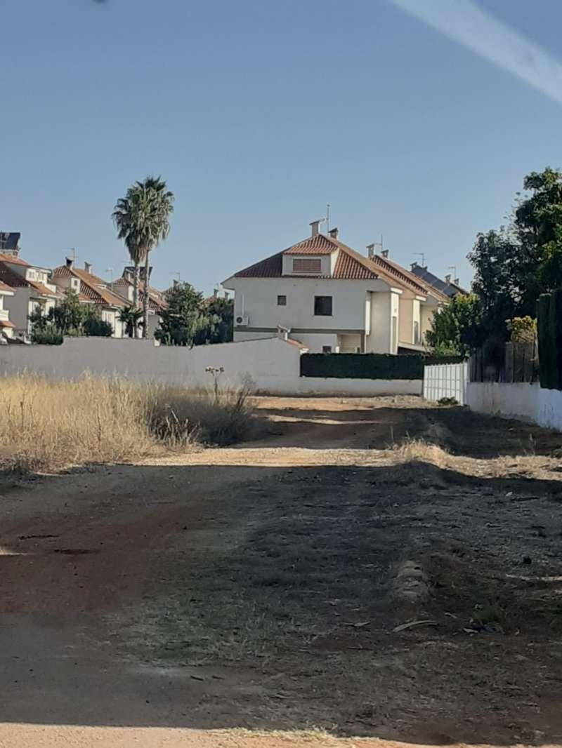 Una de las zonas afectadas por los trabajos. EPDA