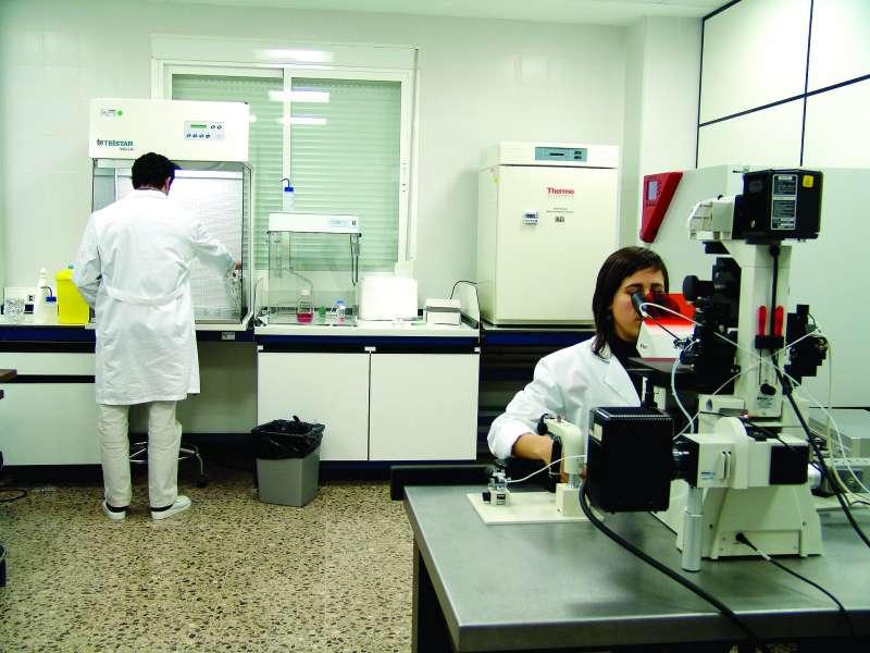 Laboratorio del CITA de Segorbe