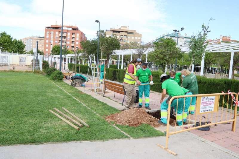 Plantación de uno de los nuevos árboles.