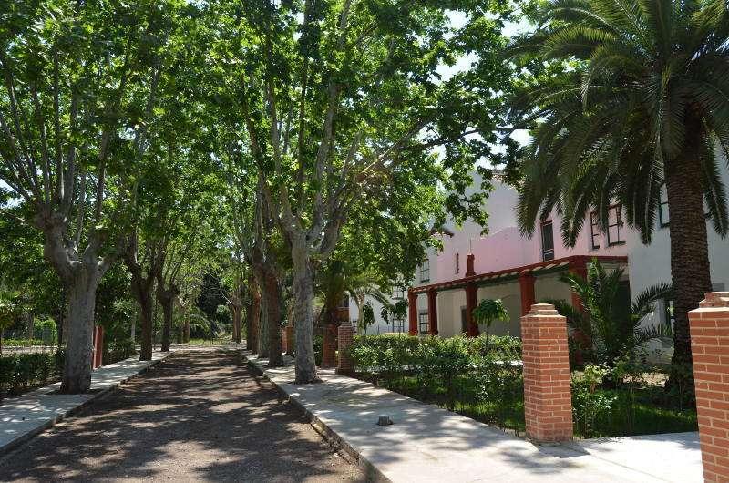 Paseo de la Gerencia de Puerto de Sagunto. EPDA.