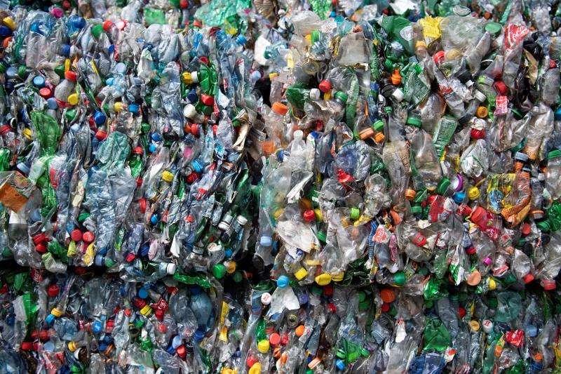 Botellas en una planta de reciclaje de plástico. EFE/Archivo