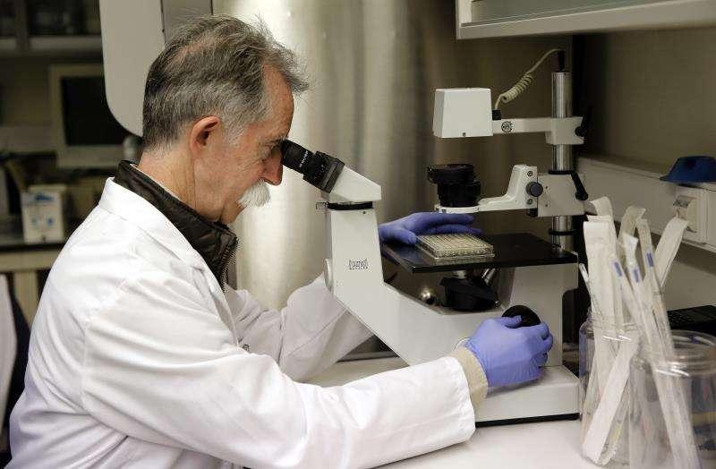 Un investigador en un laboratorio. EFE/Archivo