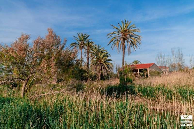 Casa Penya.