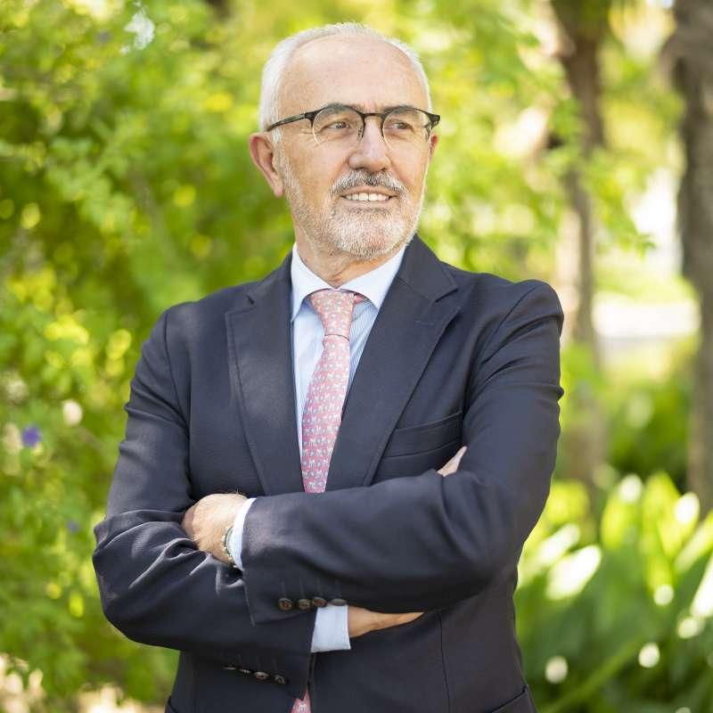 Vicente Guillem