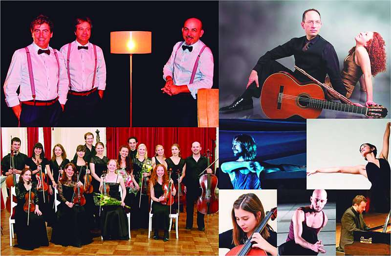 Grups que participaran en el cicle de música. EPDA
