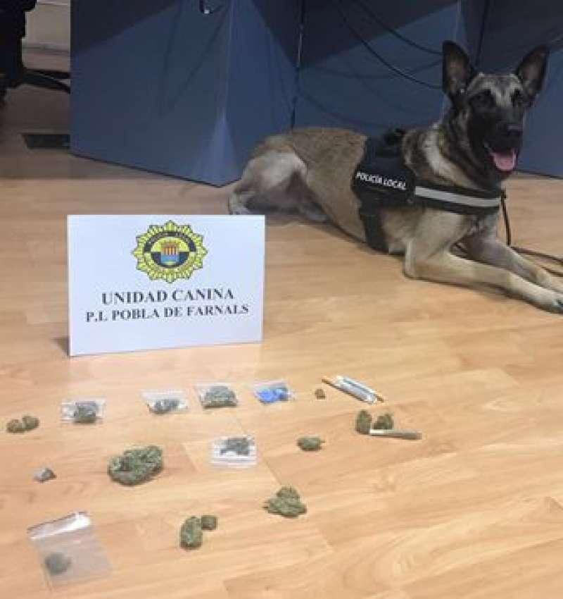 Drogas intervenidas por la Policía Local. EPDA