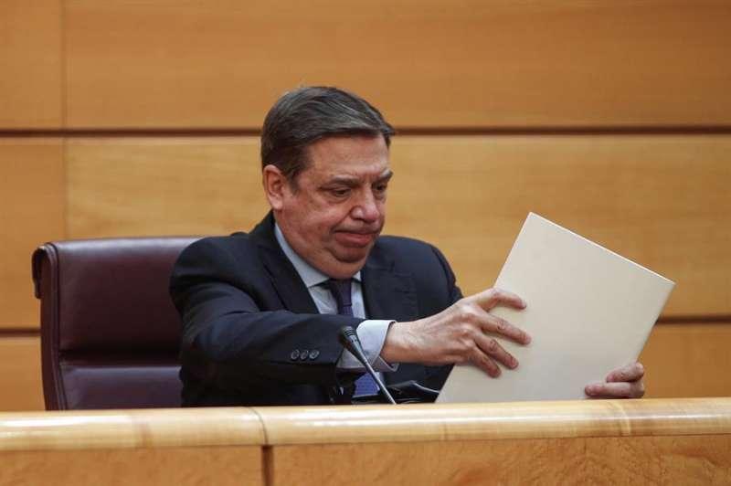 El ministro de Agricultura, Pesca y Alimentación, Luis Planas comparece en la Comisión correspondiente del Senado. EFE