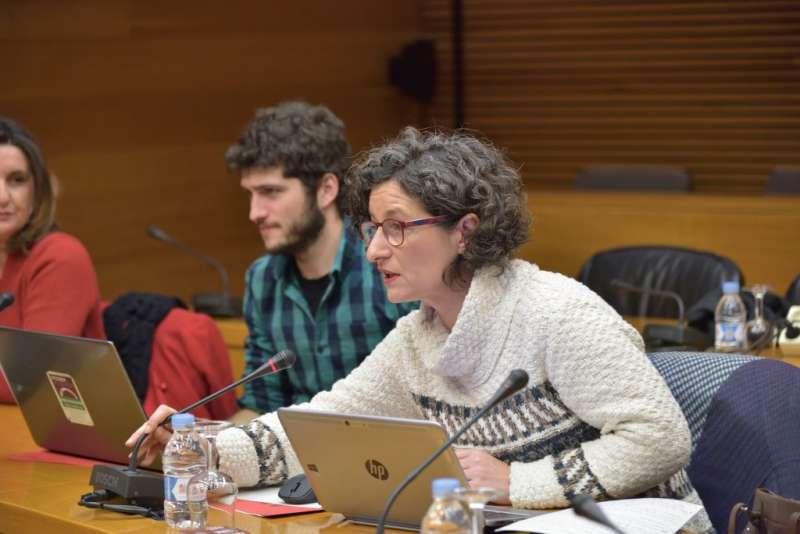 La diputada de Compromís, Graciela Ferrer