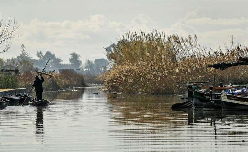 En la imagen, un pescador en uno de los canales de la Albufera. EFE/Manuel Bruque/Archivo