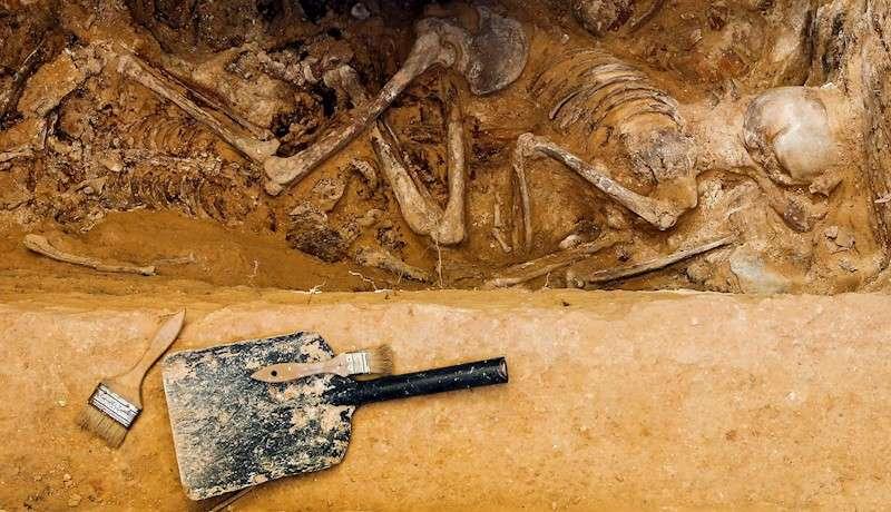 Detalle del cuerpo de un represaliado de la Guerra Civil aparecido en una fosa común. EFE/Archivo