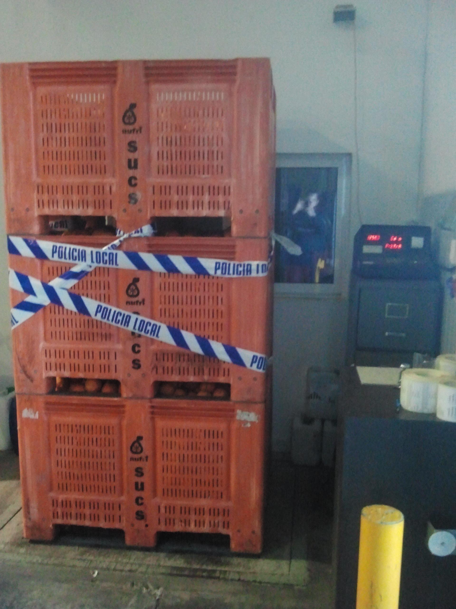 1.127 quilos de naranja fueron recuperados por la Policía Local de Alberic. FOTO: EPDA