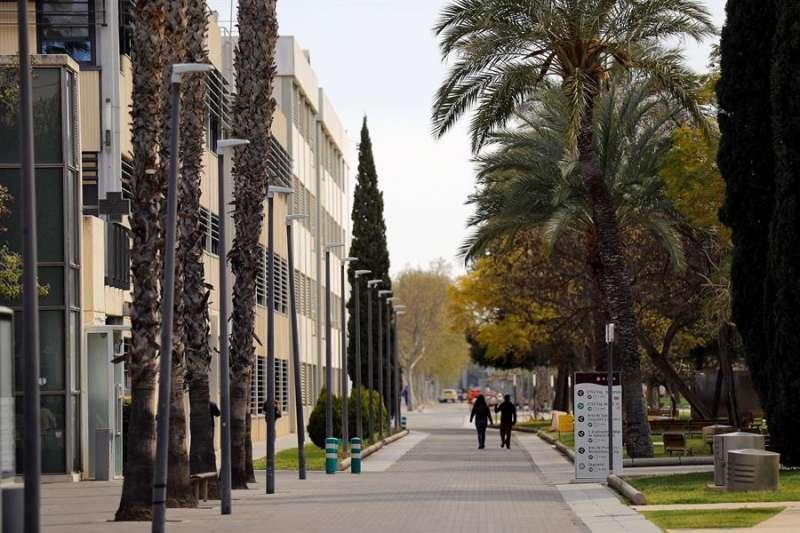 Una imagen del campus de la UPV. EFE/Manuel Bruque/Archivo
