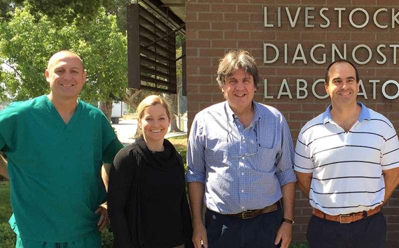 A la derecha, el catedrático de la CEU UCH, Juan Manuel Corpa, con los investigadores de la Universidad de Davis (California) autores del estudio.EPDA
