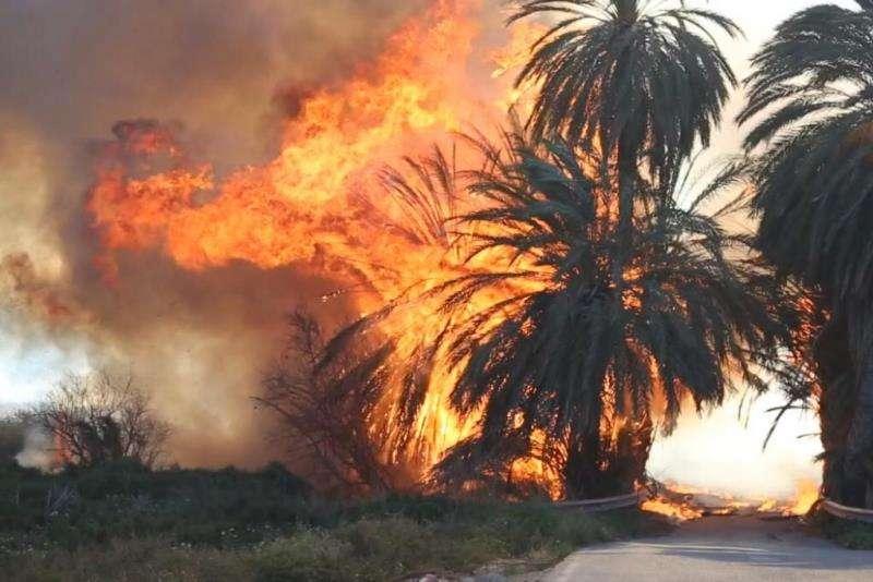 Un incendio provocado por el fuerte viento. EFE