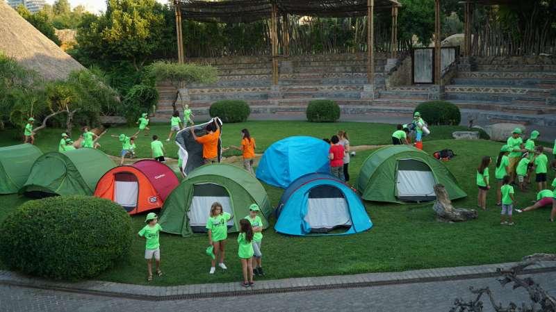 Escuela de verano de Bioparc