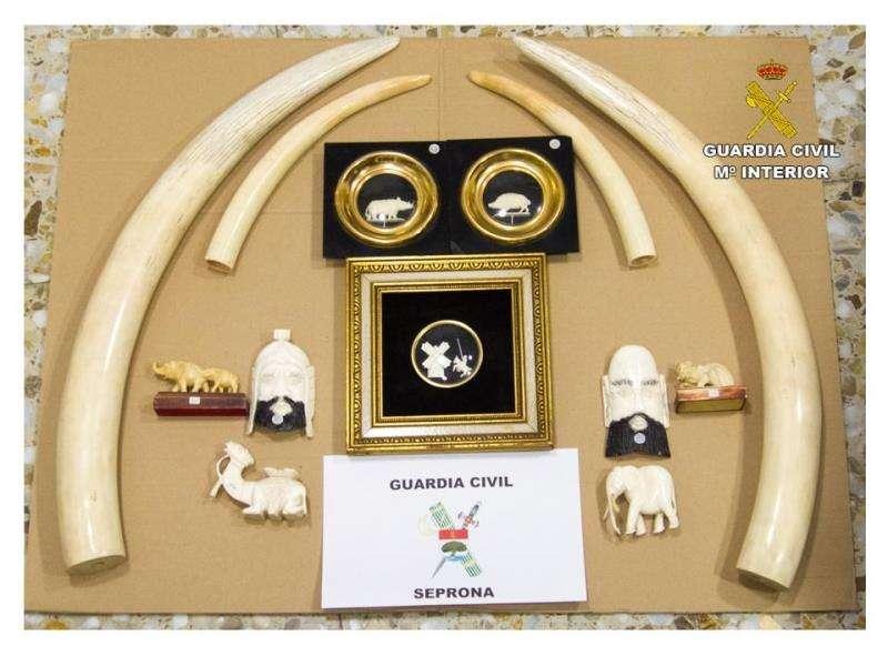 Artículos de marfil recuperados en la operación, en una imagen de la Guardia Civil.