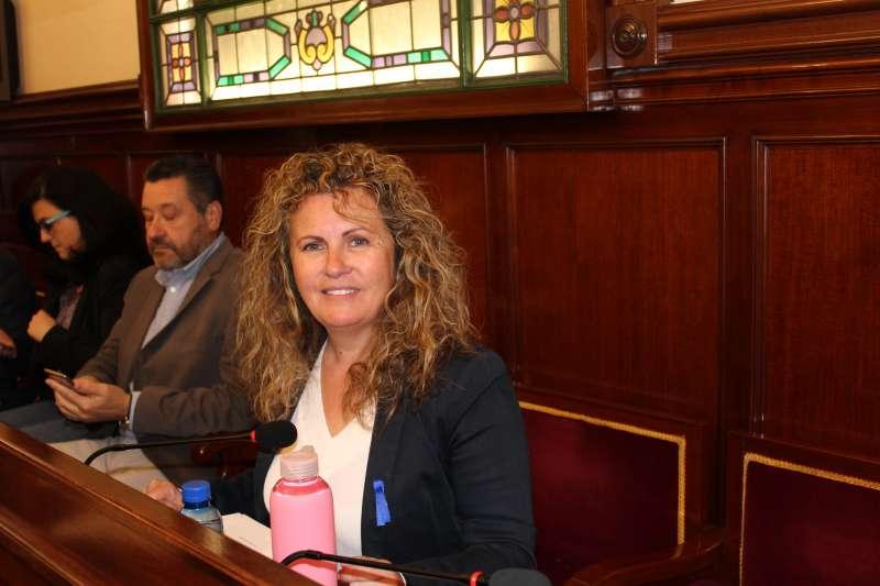 La portavoz de Ciudadanos (Cs) en la Diputación de Castellón, Cristina Fernández. EPDA