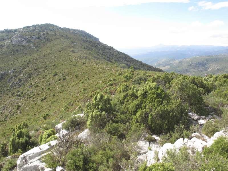 Serra d
