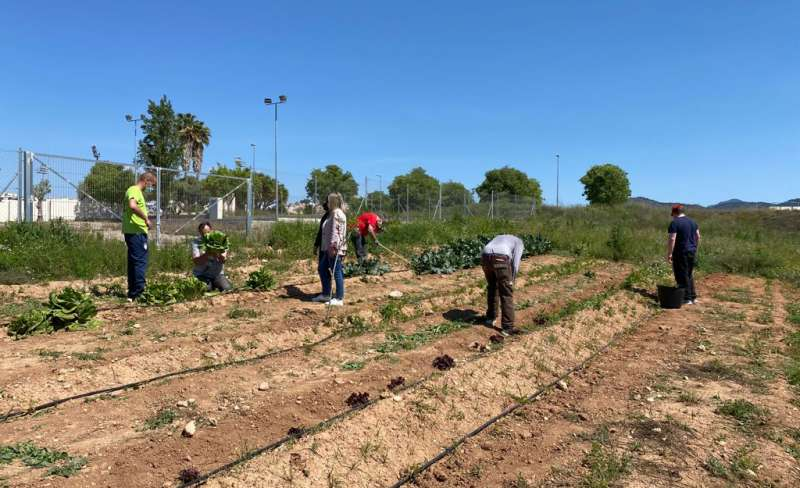Campo de prácticas agrícolas del CRIS