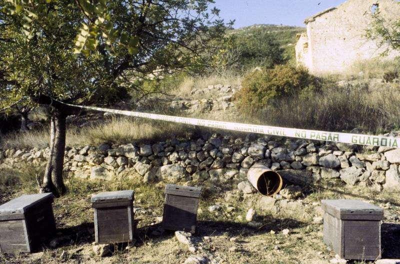 Imagen de archivo del lugar donde se encontraron los cadáveres de las tresniña de Alcàsser (Valencia). EFE/Archivo