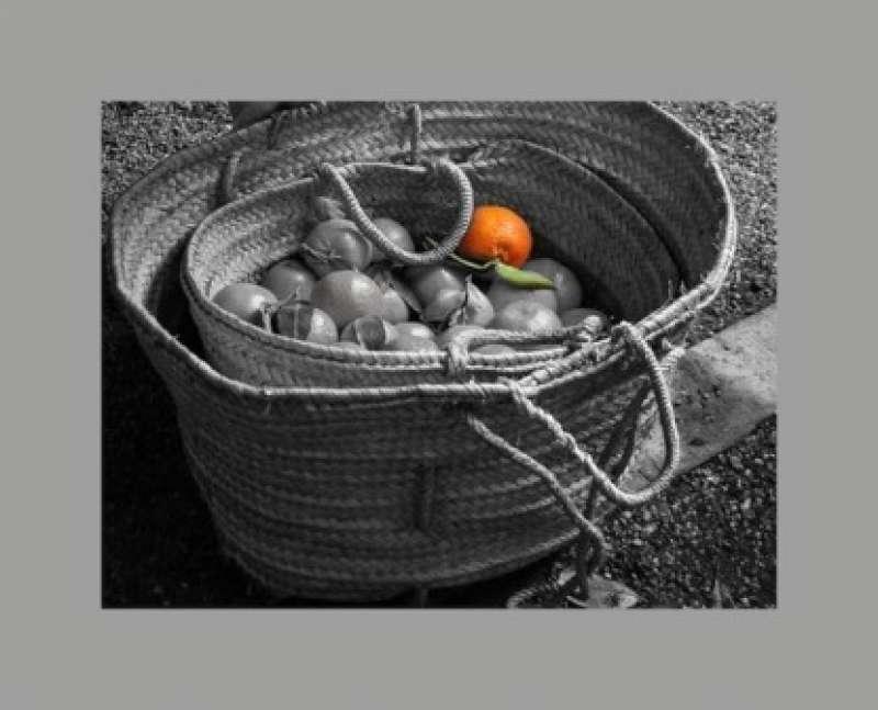 Canasta con naranja. EPDA