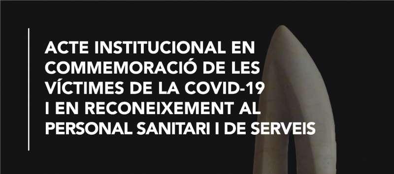 Organizado por el Ayuntamiento de Alzira